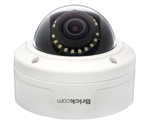 Camera megapixel dome VD-202Np
